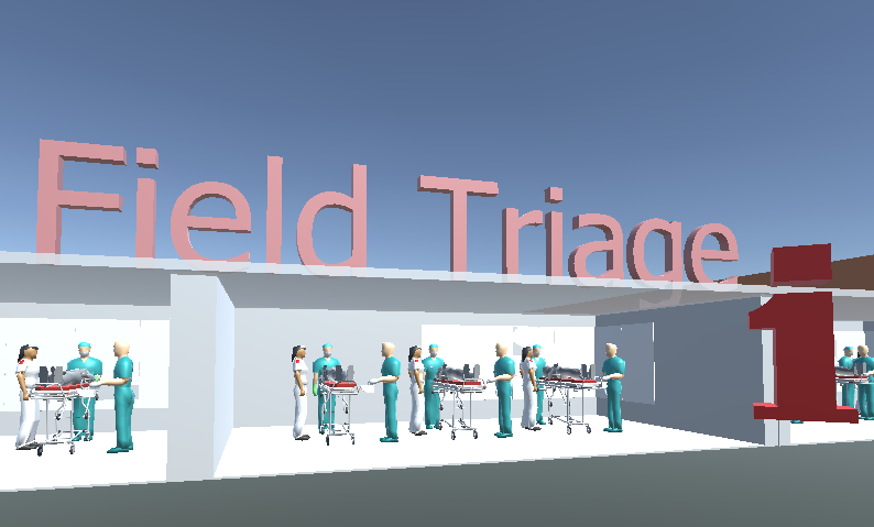 Medical triage section